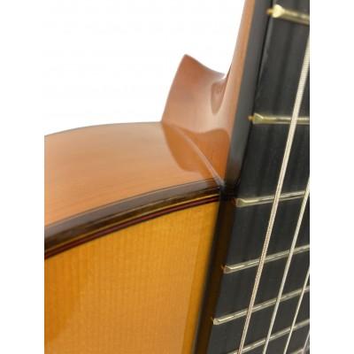 Guitarra Amalio Burguet FDV