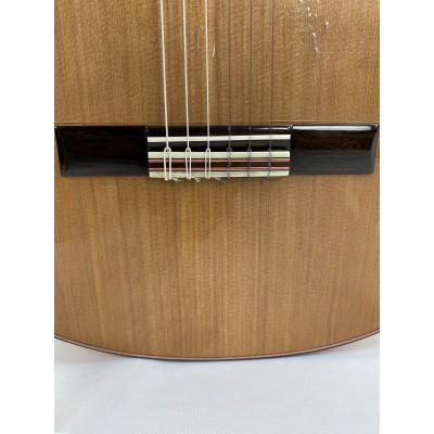 Guitarra Flamenca Valeriano Bernal Prodigio Especial 2020