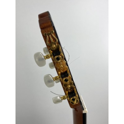 Guitarra Fernando Caldera Lidia 2020