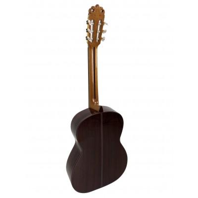 Guitarra Fernando Caldera Aniversario 2020